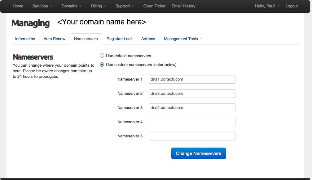 Select name servers